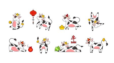 Chinese new year of white ox 2021 zodiac - vector set bulls or cows, flat cartoon animals for holiday cards, posters and home decorations, cute characters with golden coins - isolated on white