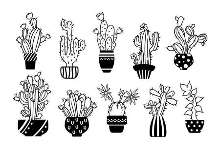 Black white line handdrawn cactus and succulent clipart - isolated potted cacti images on white background, vector bundle with desert palnts, black glyph hand made icons set