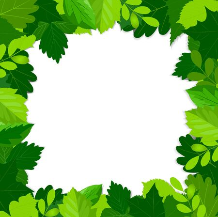 bordering: frame with various types of green leaves for summer and spring design. Vector illustration.