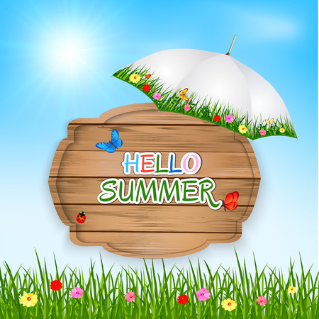 grass flower: hello summer background with text on wooden board in a  green grass, flowers and blue sky. Vector illustration.