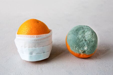 Two oranges on a gray background. On the whole, fresh orange is medical mask that protects against coronavirus during a pandemic covid-19. The second fruit is spoiled, rotten with mold. Close up image Stockfoto