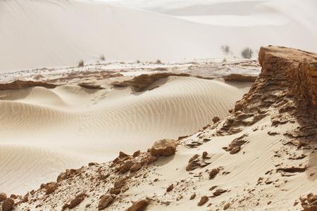 desert, sandy dune of the New Zealand