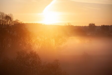 Misty forest landscape in the morning, Russia Banco de Imagens