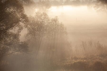 Misty forest landscape in the morning, Russia Banco de Imagens - 132108696