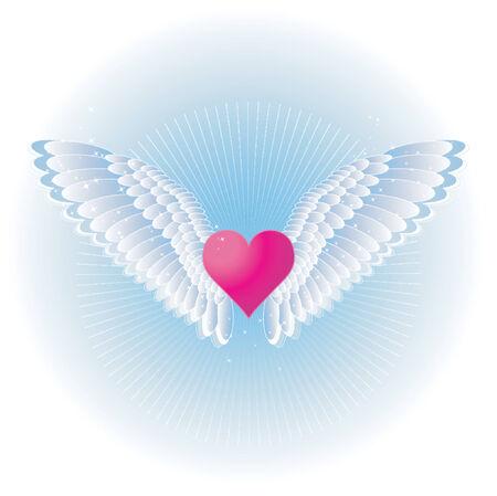 corazon rosa: Bonito coraz�n con alas de color rosa, ilustraci�n vectorial Vectores