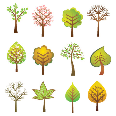 Many vector trees on the white background, vector illustration Vector