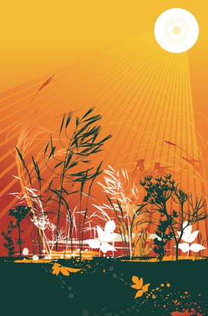 contour, drawing, graphic, sunrise, natural, nature, grunge, sunset, design, season, orange, fennel, vector, flower, meadow, stalk, plant, color, brush, shape, light, grass, curve, green, glade, spot, herb, corn, stem, crop, dill, leaf, sun, clipart, scented, tracing, radiant, cartoon, abstract, separable, decoration, creativity, silhouette, composition, stylization, illustration Vector