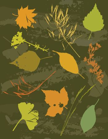 illustration, stylization, composition, silhouette, background, creativity, decoration, separable, abstract, cartoon, tracing, scented, clipart, contour, drawing, graphic, natural, nature, grunge, design, season, orange, vector, flower, biloba, stalk, plant, color, brush, shape, grass, curve, ginko, green, herb, stem, crop, dill, leaf Stock Vector - 1155964