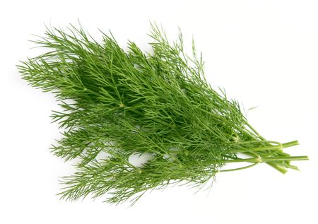 sheaf: sheaf  of green dill, isolated over white background