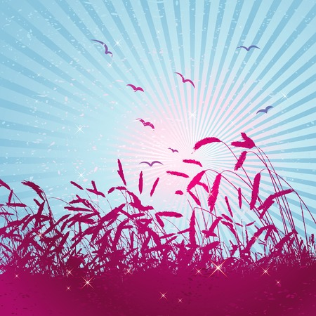 sun, art, bird, leaf, star, corn, spot, field, curve, wheat, paint, shape, brush, color, plant, style, floral, spring, vector, summer, season, design, sunset, grunge, sowing, nature, splash, natural, sunrise, graphic, element, morning, drawing, clipart, picture, tracing, cartoon, abstract, radiance, wallpaper, separable, creativity, decorative, background, silhouette, brilliance, coruscation, composition, stylization, illustration Vector