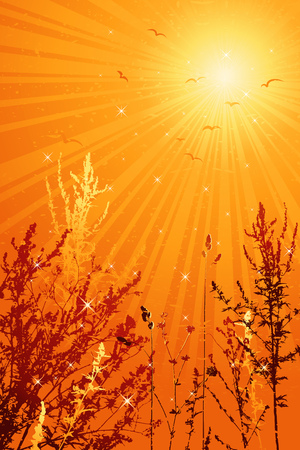 brilliance: modern, season, summer, vector, yellow, spring, floral, style, plant, color, brush,  curve, field, spot, leaf, bird, art, sky, sun, red, design, sunset, grunge, nature, detail, natural, sunrise, graphic, morning, drawing, clipart, tracing, cartoon, abstract, radiance, wallpaper, separable, creativity, decorative, brilliancy, background, silhouette, brilliance, coruscation, composition, stylization, illustration, grass, flower, spray, stalk, blade, landscape, light, sunlight Illustration