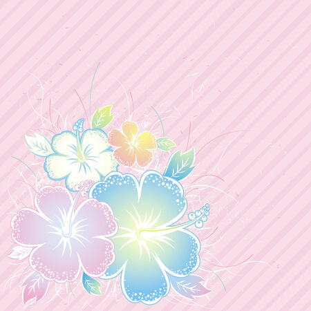 bouquet of hibiscus on pink background, vector