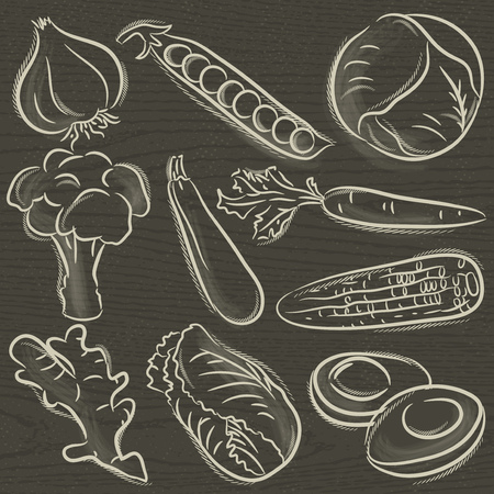 vegetable marrow: set of vegetable, garlic, peas, cabbage,  vector illustration