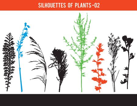 Silhouettes of parts of plants, leaves, flowers, vector illustration Çizim