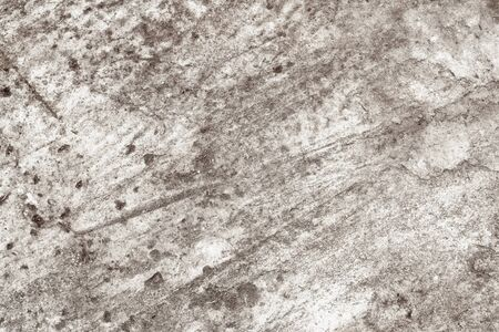 Close up of white cement floor texture, background Stok Fotoğraf