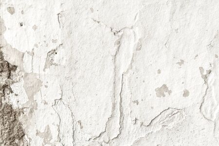 Old white grunge textures backgrounds. White Wall Background Stok Fotoğraf