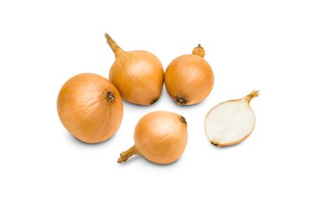 an onions: cebollas frescas