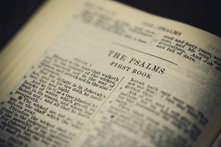 Psalms scripture in the holy bible