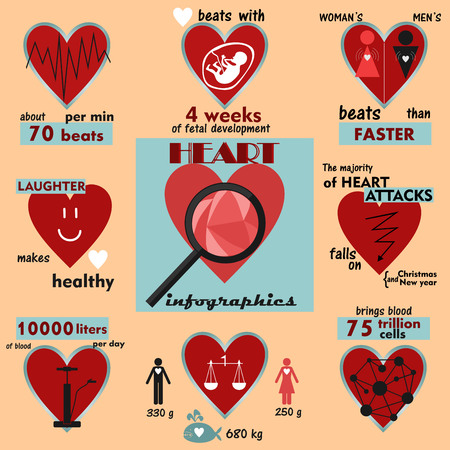 interesting: info graphics and interesting facts about the human heart and cardiac activity
