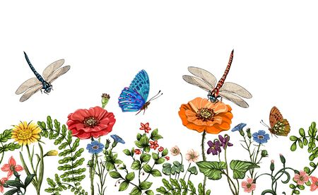 grasslands: Vector vertical border with dragonflies, butterflies, flowers, grass and plants. Summer style. Seamless nature border, floral background. Vector horizontal banner with colorful plants and insects Stock Photo