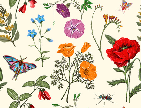 Summer vector seamless pattern. Botanical wallpaper. Plants, insects, flowers in vintage style. Butterflies, beetles and plants in the style of Provence. Drawn nature wallpaper. Summer wallpaper