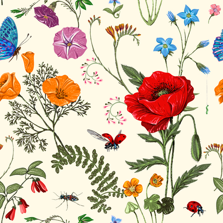 Summer vector seamless pattern. Botanical wallpaper. Plants, insects, flowers in vintage style. Butterflies, beetles and plants in the style of Provence. Drawn nature wallpaper. Summer
