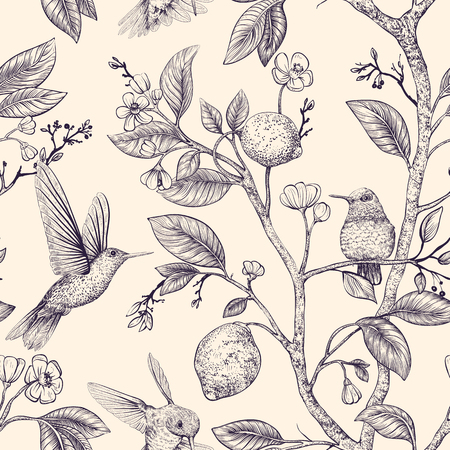 Vector sketch pattern with birds and flowers. Hummingbirds and flowers, retro style, nature backdrop. Vintage monochrome flower design for web, wrapping paper, cover, textile, fabric, wallpaper Illusztráció