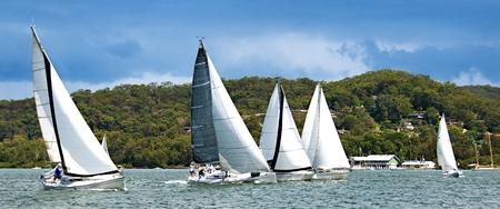 丘陵ツリーに対してブリスベーン水ゴスフォードのレーシング 5 の単胴船のヨットには、水平線の背景がちりばめられています。中央海岸、ニュー  写真素材