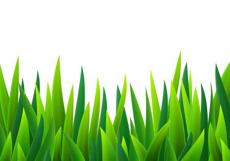 緑の草  イラスト・ベクター素材