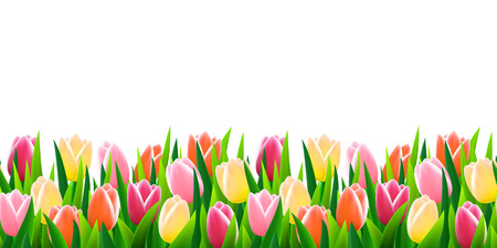 Flowers seamless border
