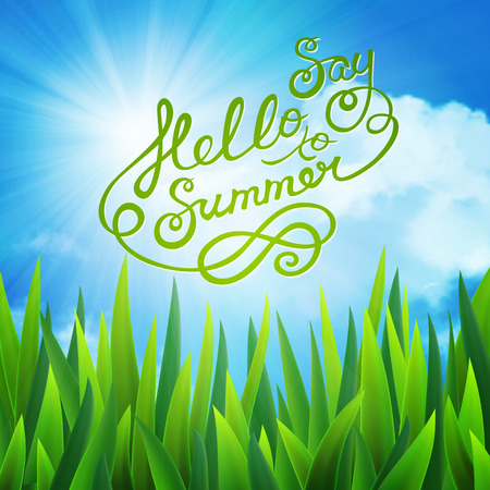 say hello: background with say hello to summer text, sun over clouds and grass Illustration