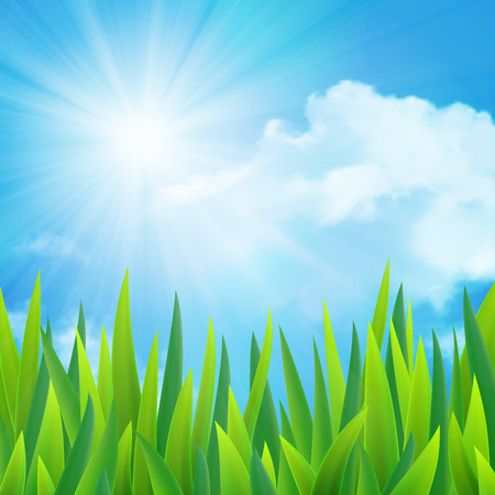Beautiful landscape with grass and clouds illustration