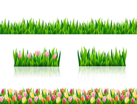Set of seamless borders with fresh green grass and flowers Illustration