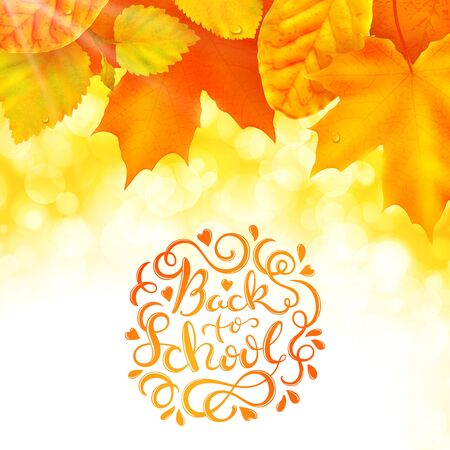 Back to school poster with hand drawn lettering and autumn leaves, vector illustration
