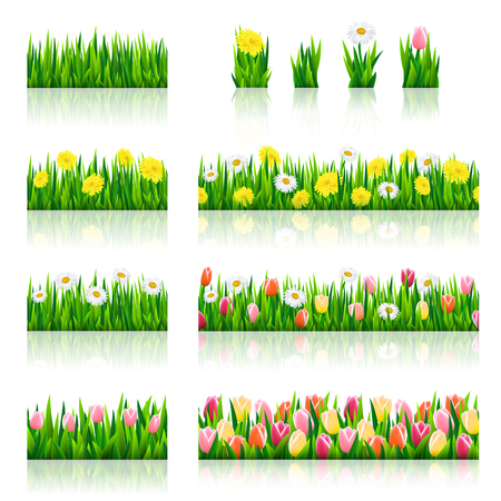 fields of flowers: Big set of seamless borders with grass and flowers, vector illustration