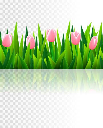 tulips in green grass: Seamless border with grass and flowers, vector illustration Illustration