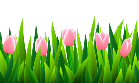 fields of flowers: Seamless border with grass and flowers, vector illustration Illustration