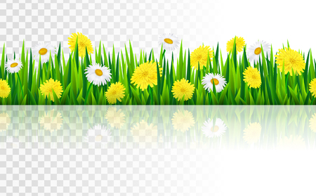 Seamless border with grass and flowers, vector illustration Illustration