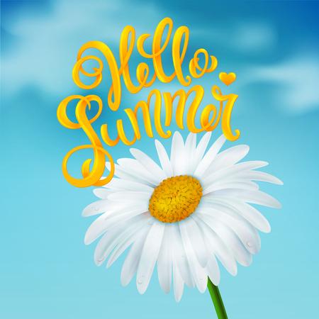 Chamomile on a blue sky background Illustration