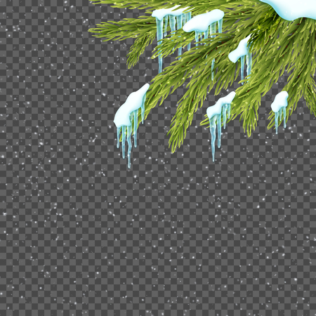 Border with relistic firtree, snow and icicles over transparent background. Winter snowfall. Design template for merry christmas. Vector illustration.