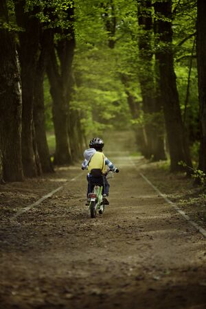 Little boy rides a bicycle in the park. Summer sunny day. Tall trees along the walkway. The boy in a protective helmet and knee pads. Back view.