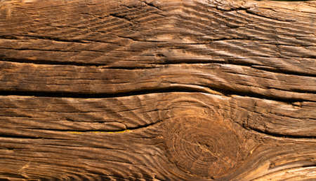 Old wooden background with cracks. Slice from a tree old weathered wood texture.