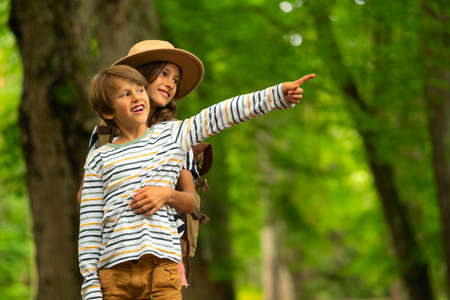 Smiling children on a walk in the woods. A bright sunny day. Imagens
