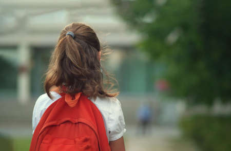 Child goes back to school. Cute pupil with backpack. Girl back view
