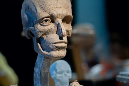 The process of creating ecorche. The sculptor is working.