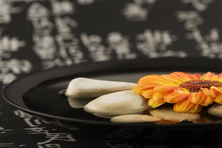gerbera flower and plate on chinese background photo