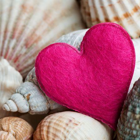 love of life: still-life con conchiglie e cuore rosa  Archivio Fotografico