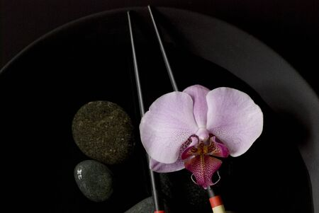 orchid flower still life asia style photo