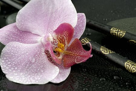 orchid flower still life with chopsticks photo