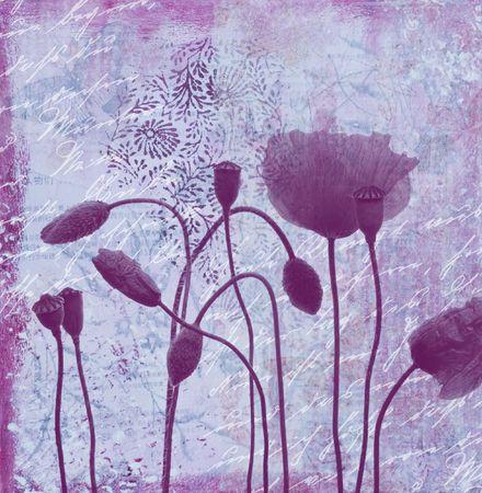 양 귀 비 꽃과 콜라주 그림, 삽화를 만들고 자신에 의해 그려진
